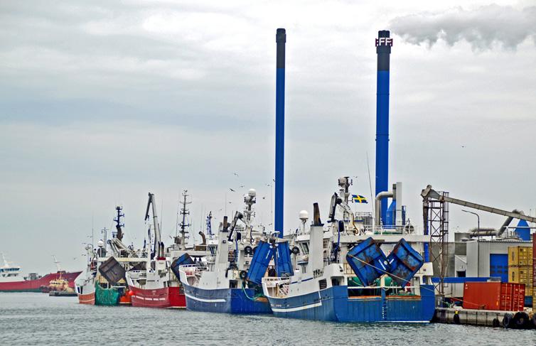 Skagens hamn