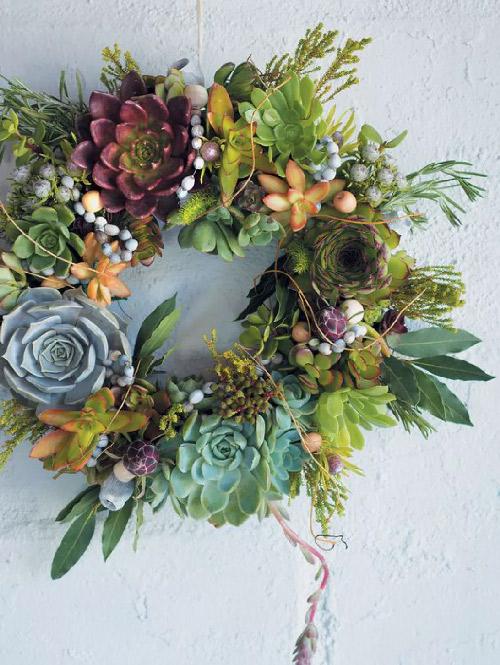 Inspiration. Couronne de succulentes. Vue d'une couronne faite à base de succulentes. Très original.