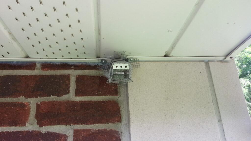 Mice Control Milwaukee