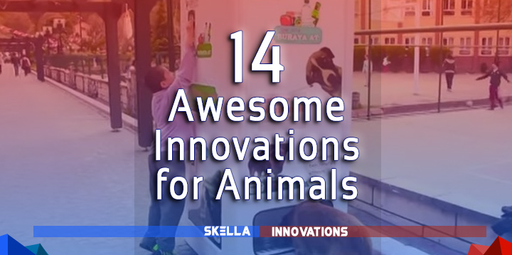14 Amazing Technology and Innovation for Animals