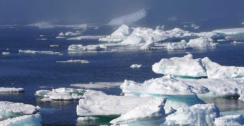 Arctic Sea Ice update