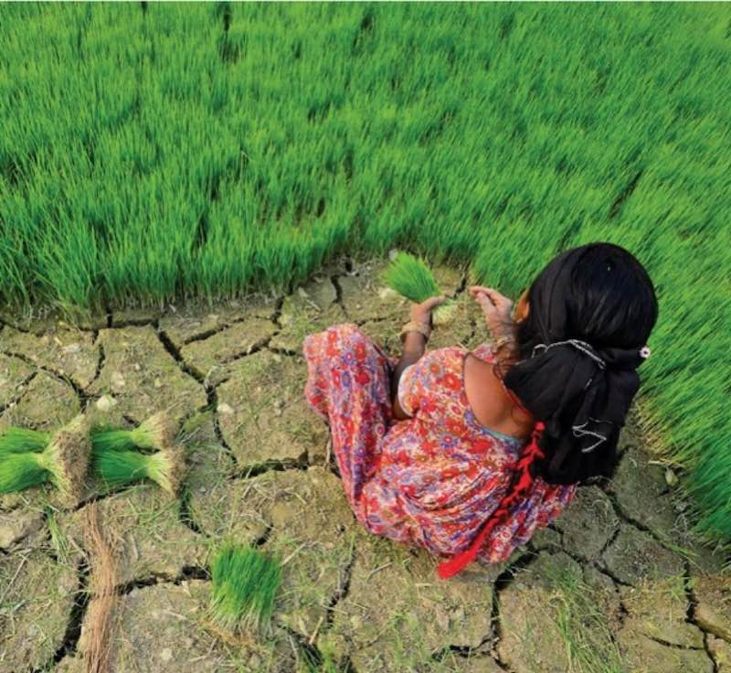 """Report: """"Urgent Action on Climate Adaptation needed"""""""