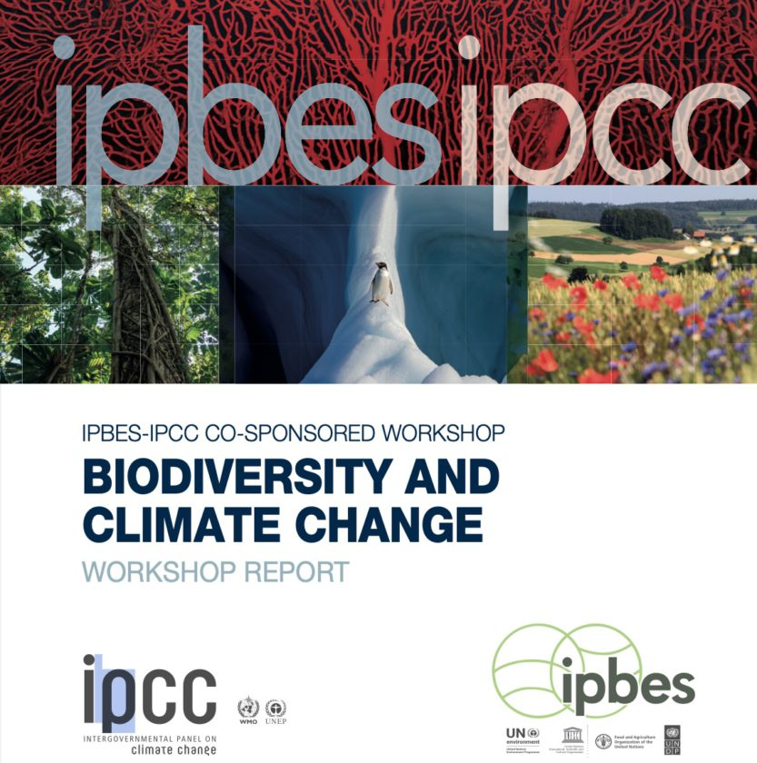 Biodiversity or Climate Change - Which is more critical?