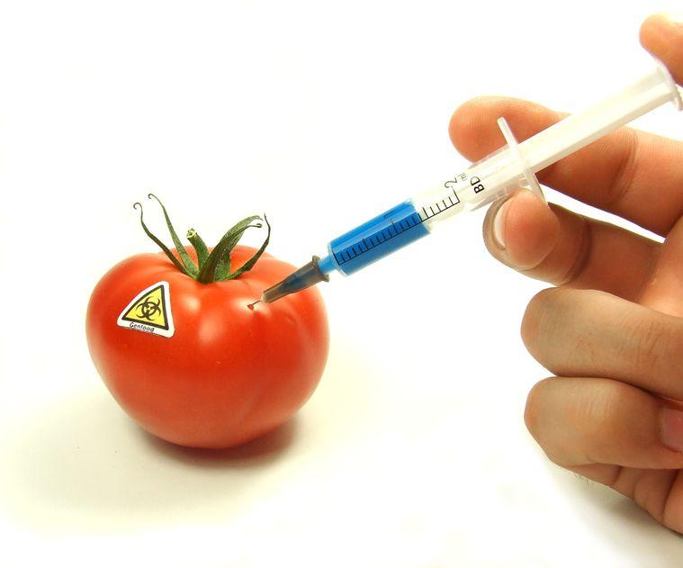 anti-GMO anti-vaccine
