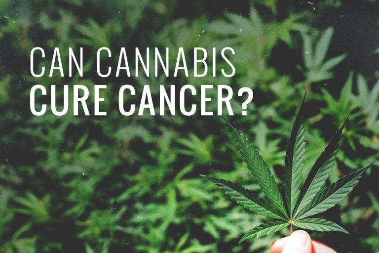 marijuana cure cancer