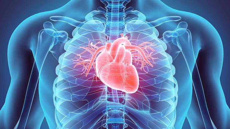 statins prevent cardiovascular death
