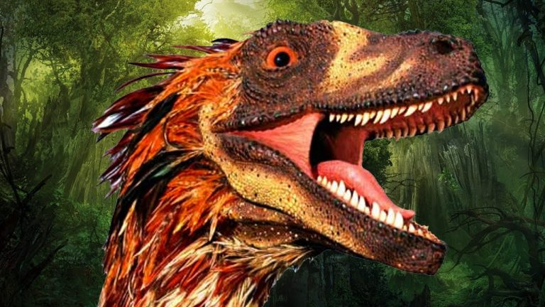 skeptical raptor website updates