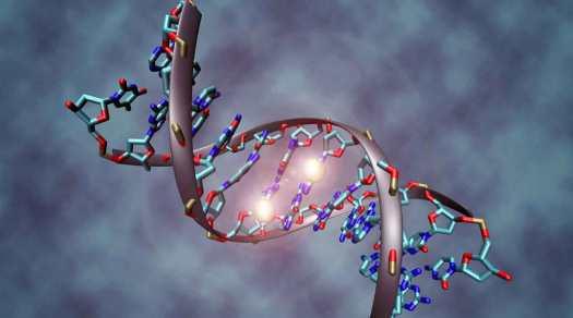 MTHFR gene and vaccines