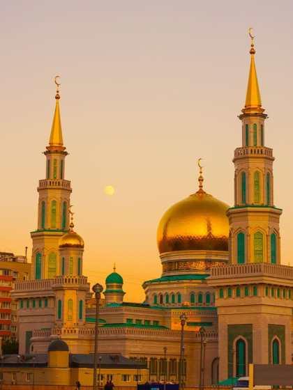 skeptic society Divisions of Islamophobia