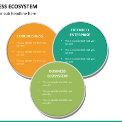 3 Arrow Circle Diagram Photosynthesis Process For 5th Grade Business Ecosystem Powerpoint Template | Sketchbubble