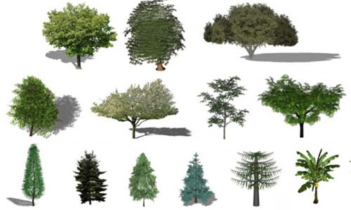 Refresh the greenery in the Renders with this Free Library of plants for SketchUp
