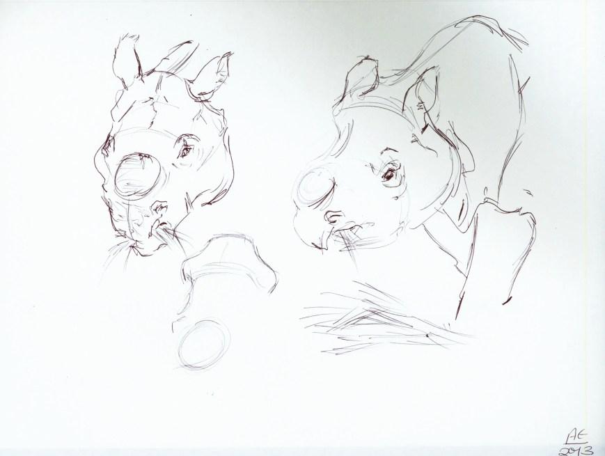 Rhino Studies 1