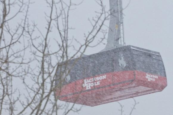 Jackson Hole Tram