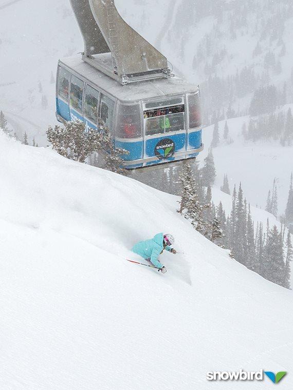 Salt Lake City El Nino, Salt Lake City Lake Affect Snow, Snowbird El Nino 2015, Snowbird snowfall 2014