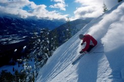Fernie five bowls, Fernie bowl skiing