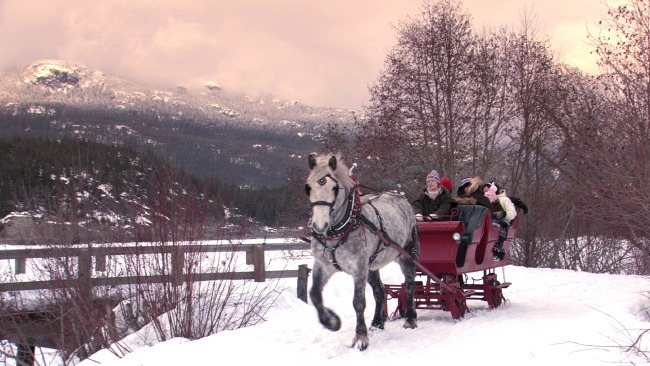 Horse-draw sleigh rides in Whistler Blackcomb provide an authentic, old-timey winter experience through a gorgeous winter wonderland. pc: Destination British Columbia