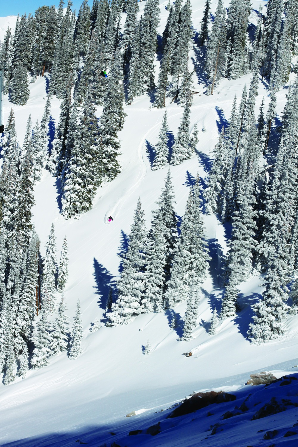 glades Crested Butte, tree skiing Crested Butte
