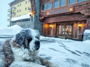 portillo snow storm