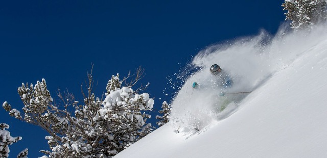 intermediate powder skiing