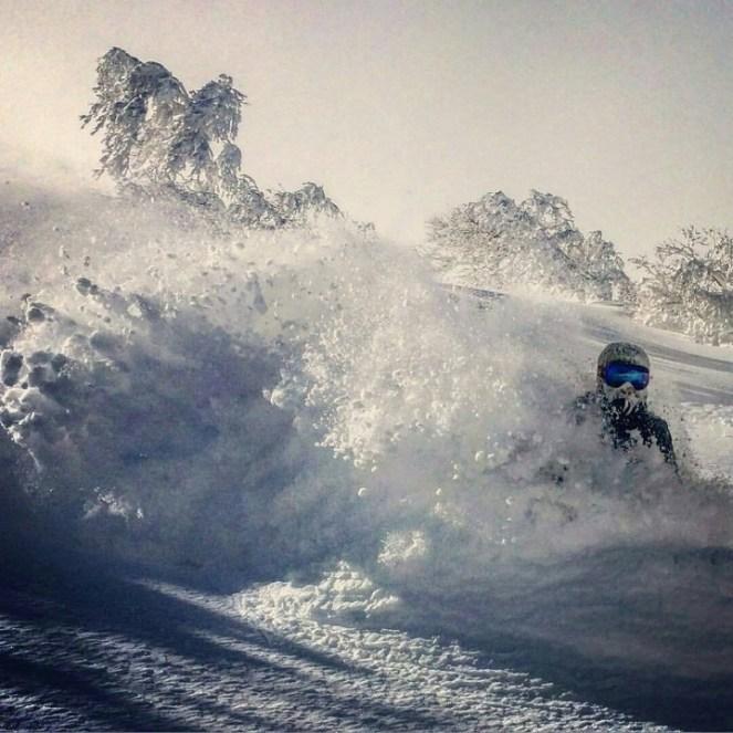 Niseko ski resort, Niseko skiing