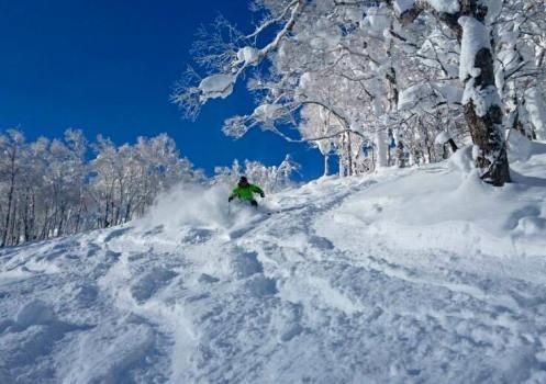 Rusutsu snowfall, Rusutsu skiing