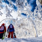 ski japan, Japan ski vacation, Japan ski packages, snowboard Japan vacation
