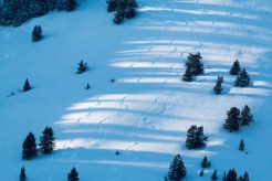 jackson hole record breaking snow