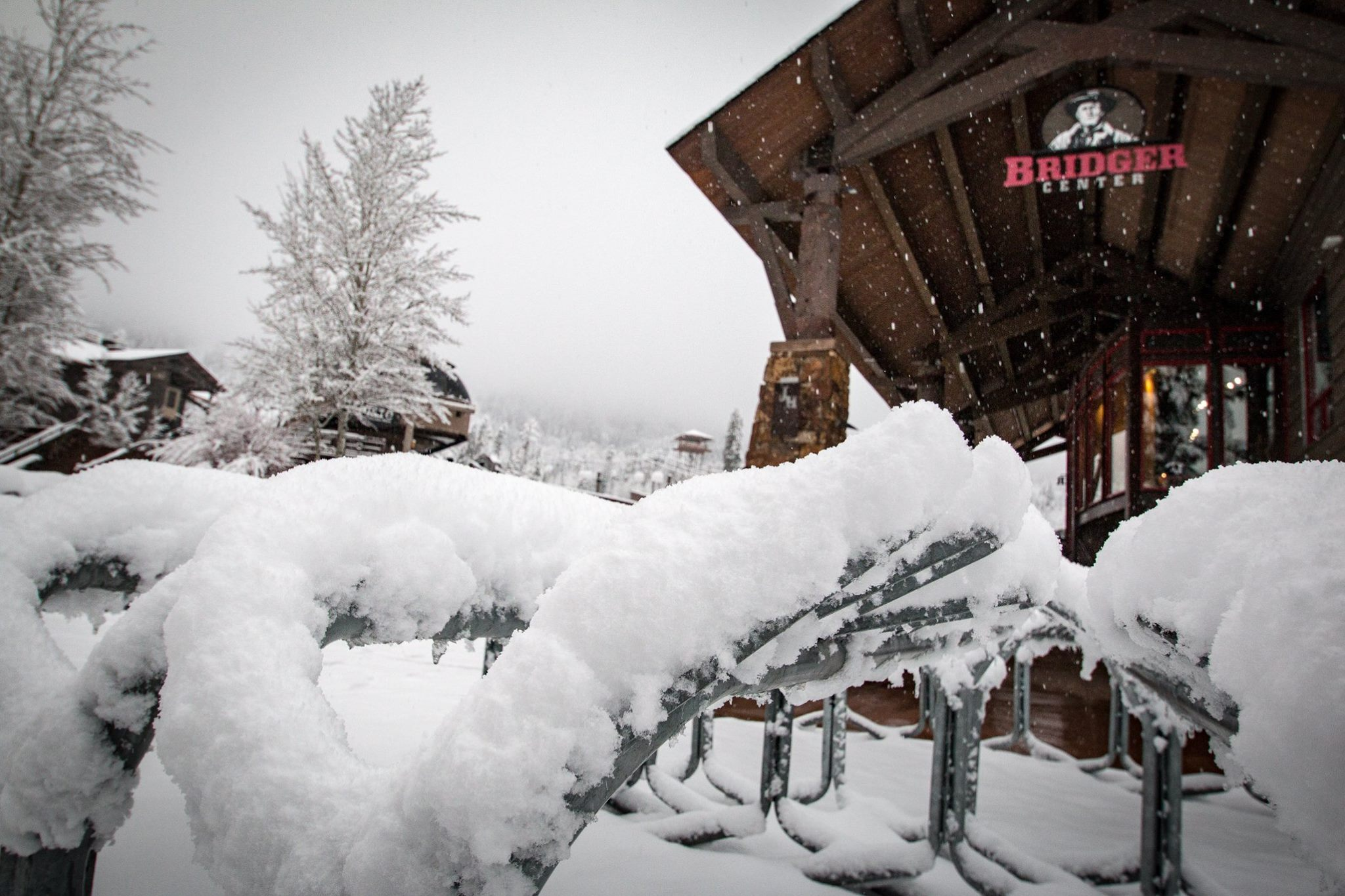 jackson hole snow, where is it snowing, where has it snowed