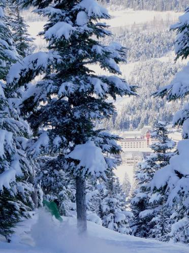 alyeska la nina, la nina alyeska, best resorts for la nina