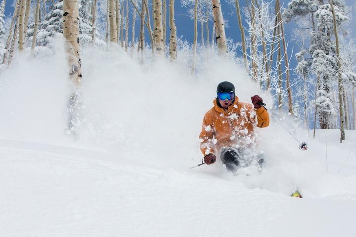 aspen tree skiing, snowmass tree skiing, aspen highlands tree skiing