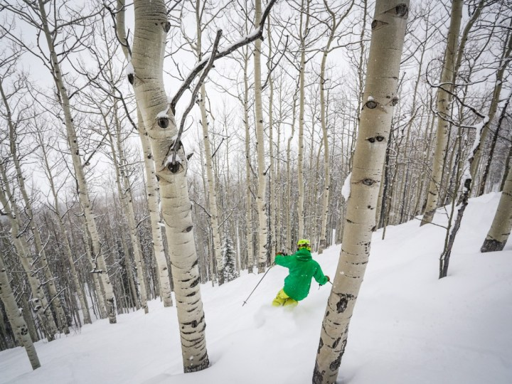 Crested Butte tree skiing, Crested Butte glades