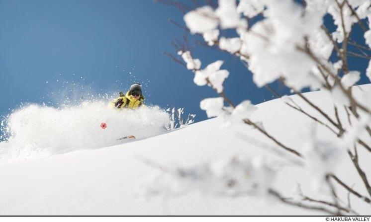 honshu ski resorts, nagano ski resorts