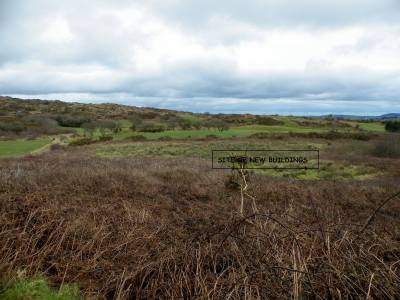 Skibbereen-Animal-Sanctuary-and-Rescue-Centre (134)