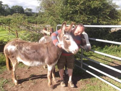 Skibbereen-Animal-Sanctuary-and-Rescue-Centre (40)