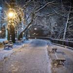 plock_zimowy_18
