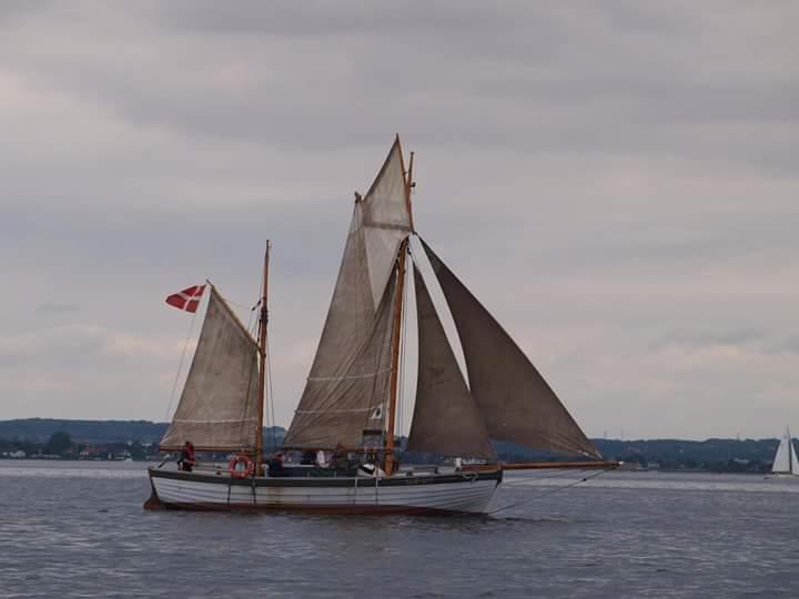 Skibet træskib båd sejlads stort og småt fra 2017