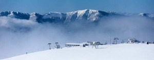 mt buller mid week in snow