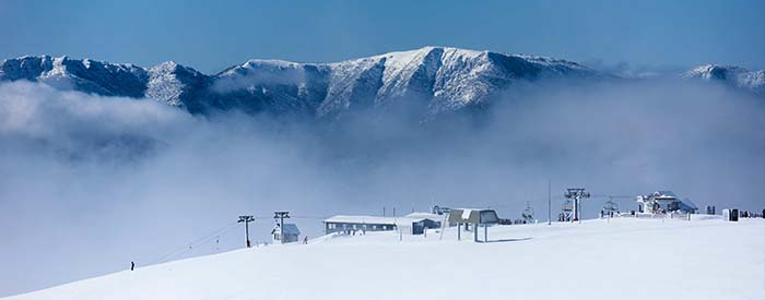 mt buller top of mountain