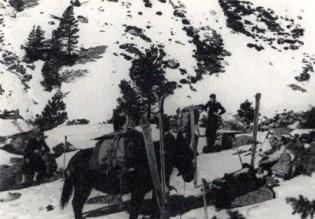 Cercadors de pistes