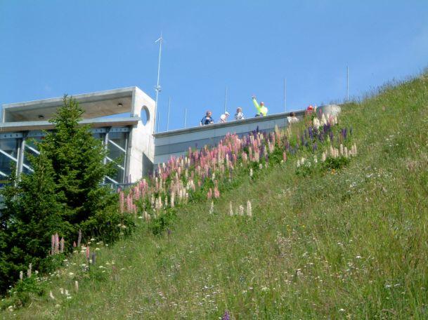 Ski club Champoussin 2003 067