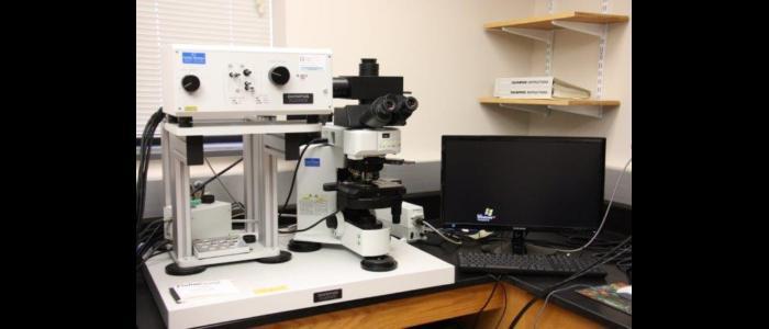 Confocal Laser Scanning Laboratory