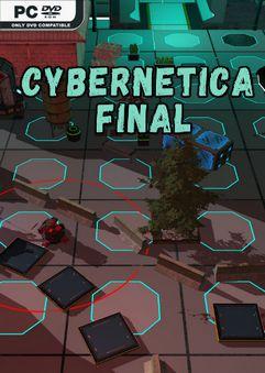 Cybernetica Final TiNYiSO