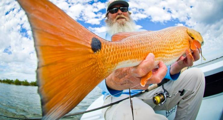 Mosquito Lagoon Redfish Charters with Capt. Willy Le.