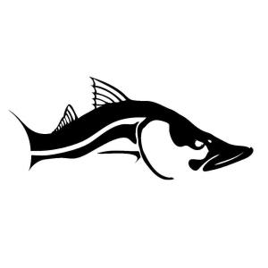 Snook decal! ‼USE CO…