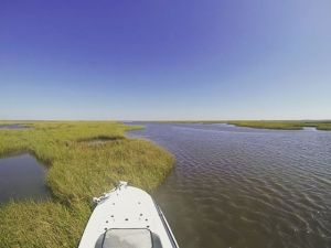 Skiff Porn Wednesday! Little 60MPH fly by in my @eastcapeskiffs Vantage VHP! #re…