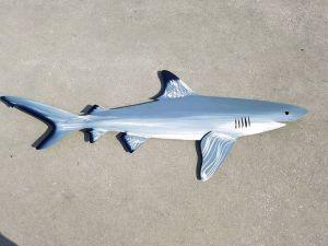 shark-art