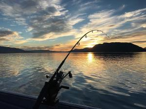 Great sunset, flat water and catching fish. Summer finally showed up in   …