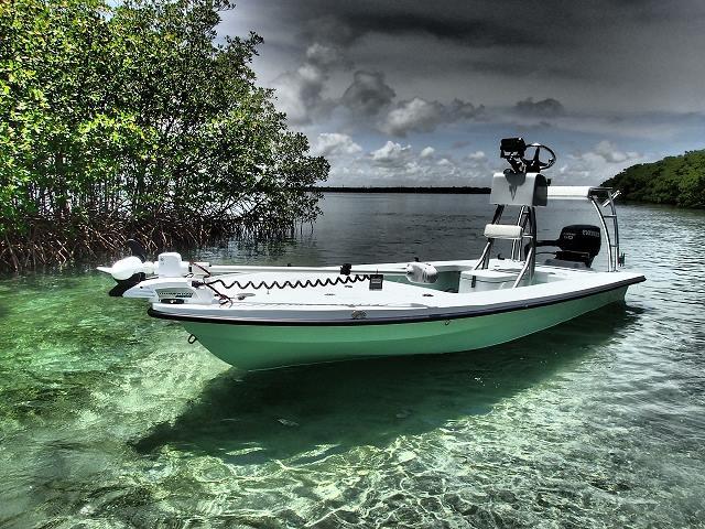 skiff heron salt marsh