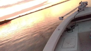 Another great day on the bay…