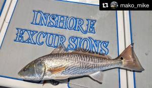 gettin it done ・・・ When I fish  I always have the perfect        …